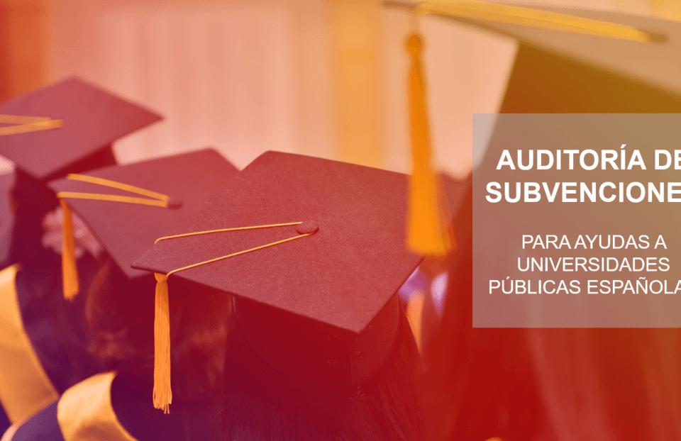 auditoria-subvenciones-universidades-publicas-960x622 Blog Auditores de Cuentas