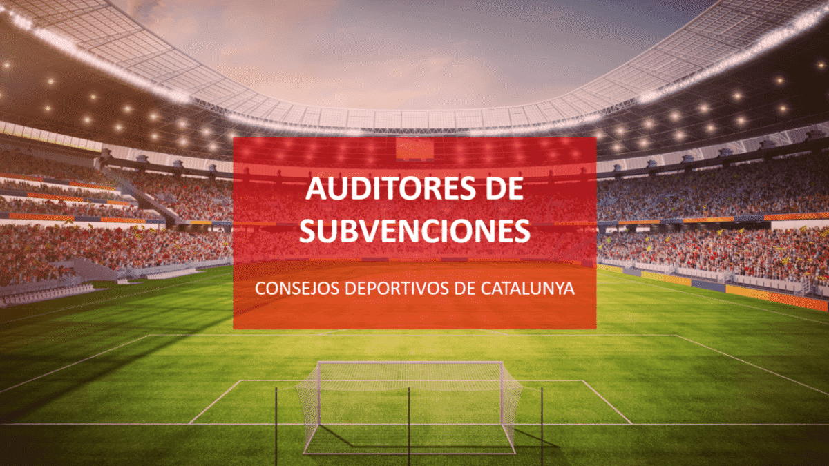 auditores-roac-subvenciones-consejos-deportivos