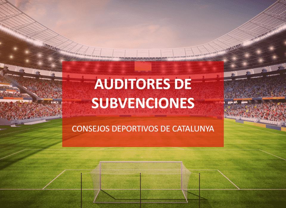 auditores-roac-subvenciones-consejos-deportivos-960x696 Blog Auditores de Cuentas