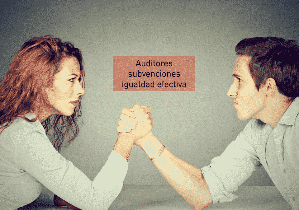 Auditores de Subvenciones igualdad efectiva