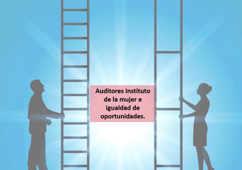 Auditoria instituto de la mujer e igualdad de oportunidades