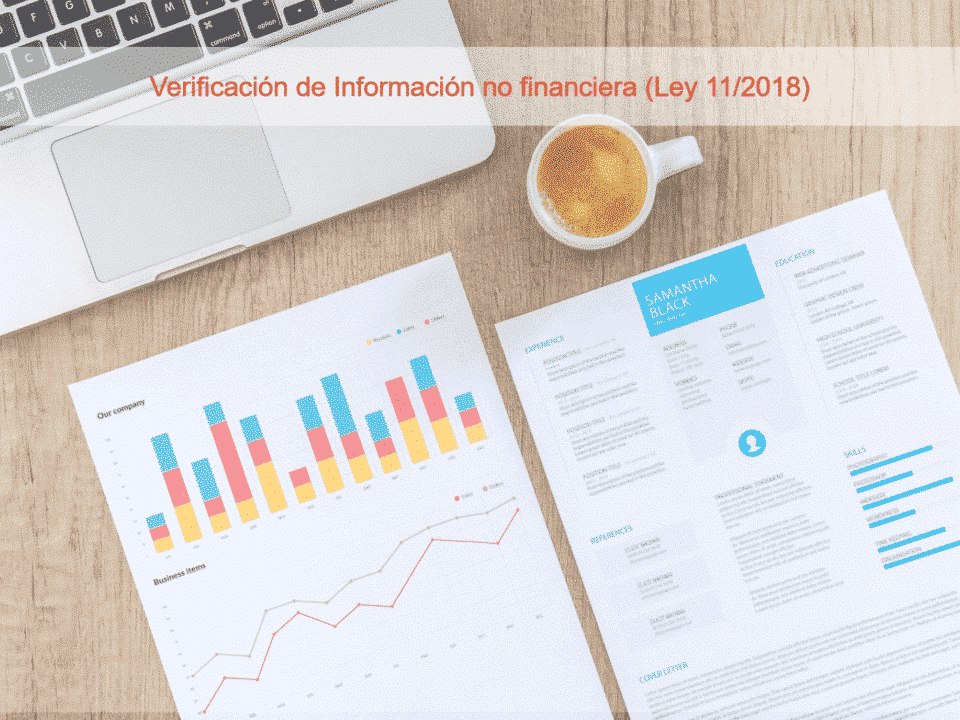 Verificación información no financiera auditor